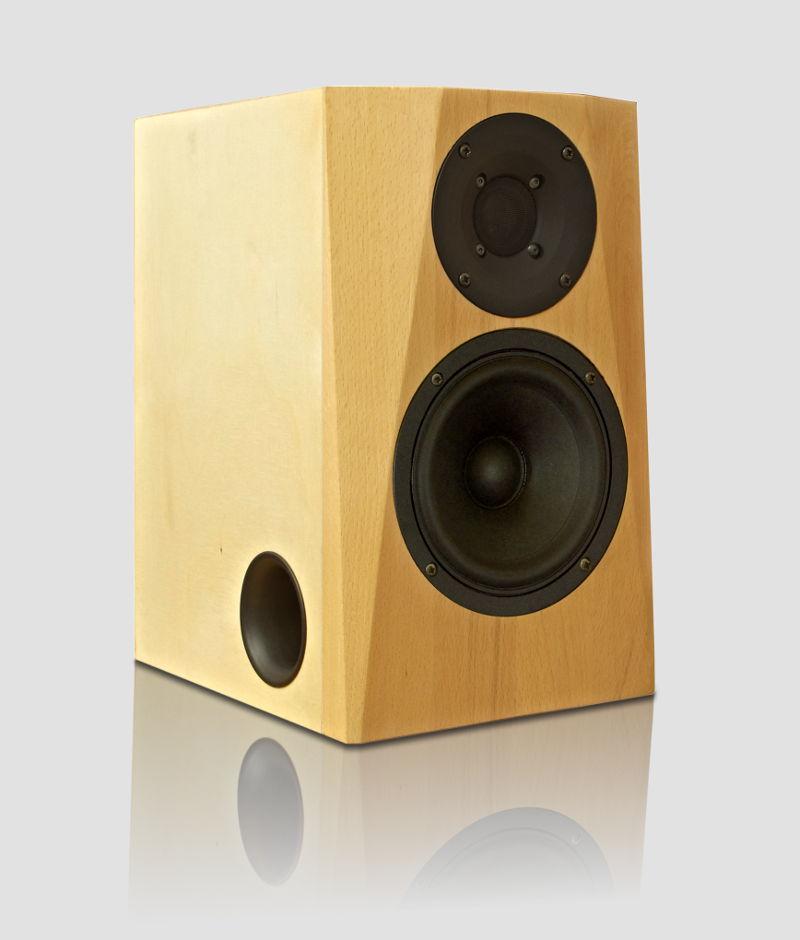 DIY Speaker | DXT-MON | nearfield