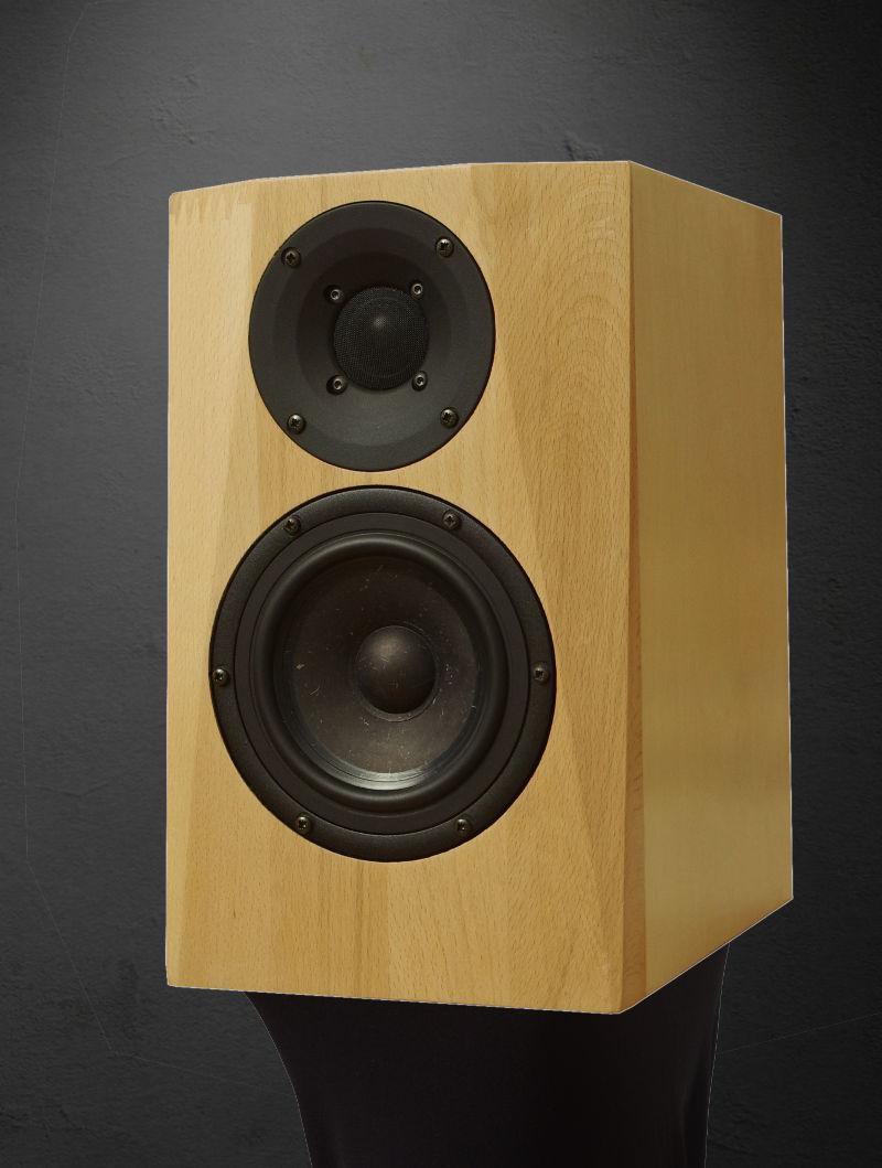 DIY Speaker   DXT-MON RLY   Monitor speaker